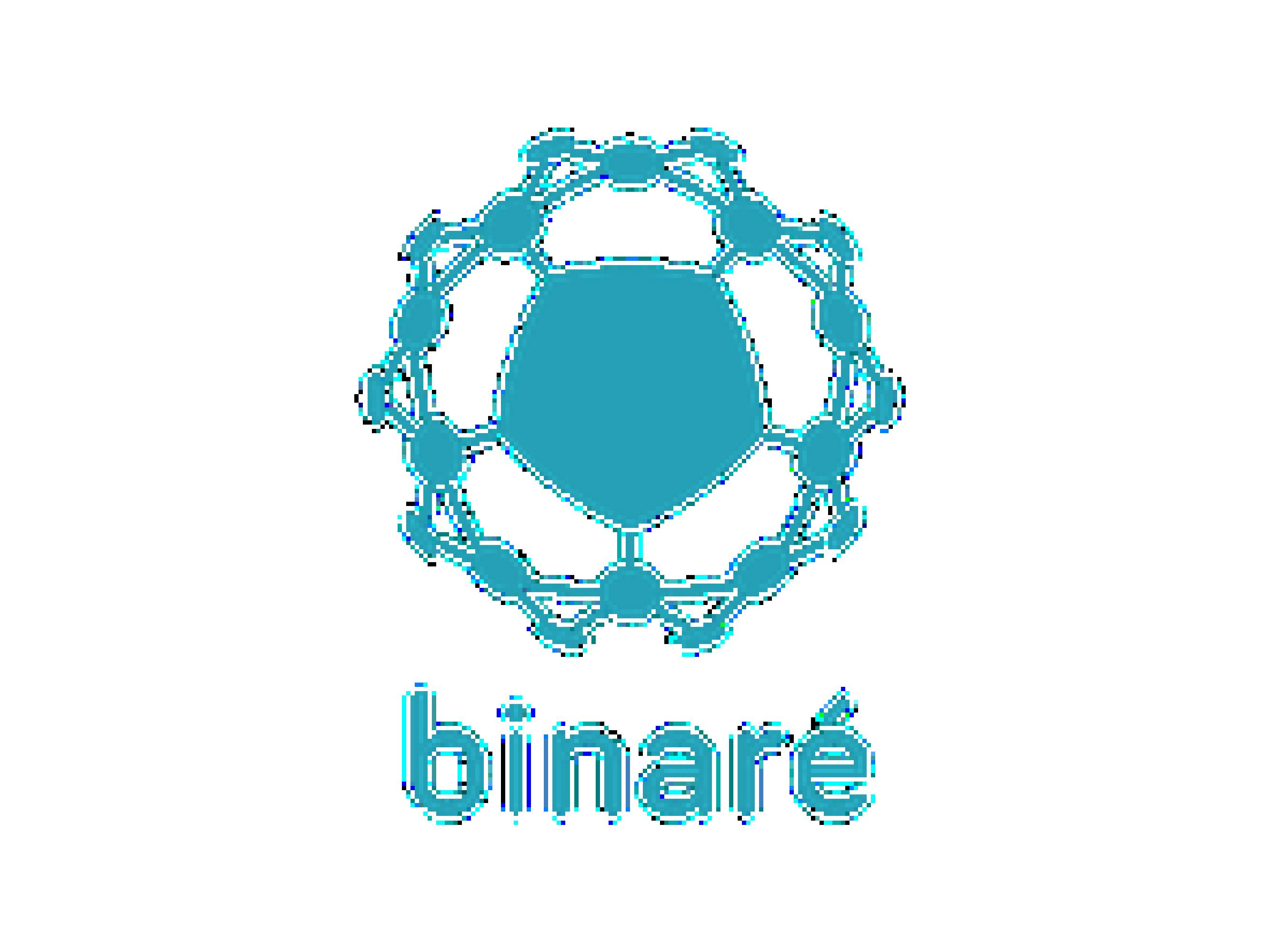 binare-1-01